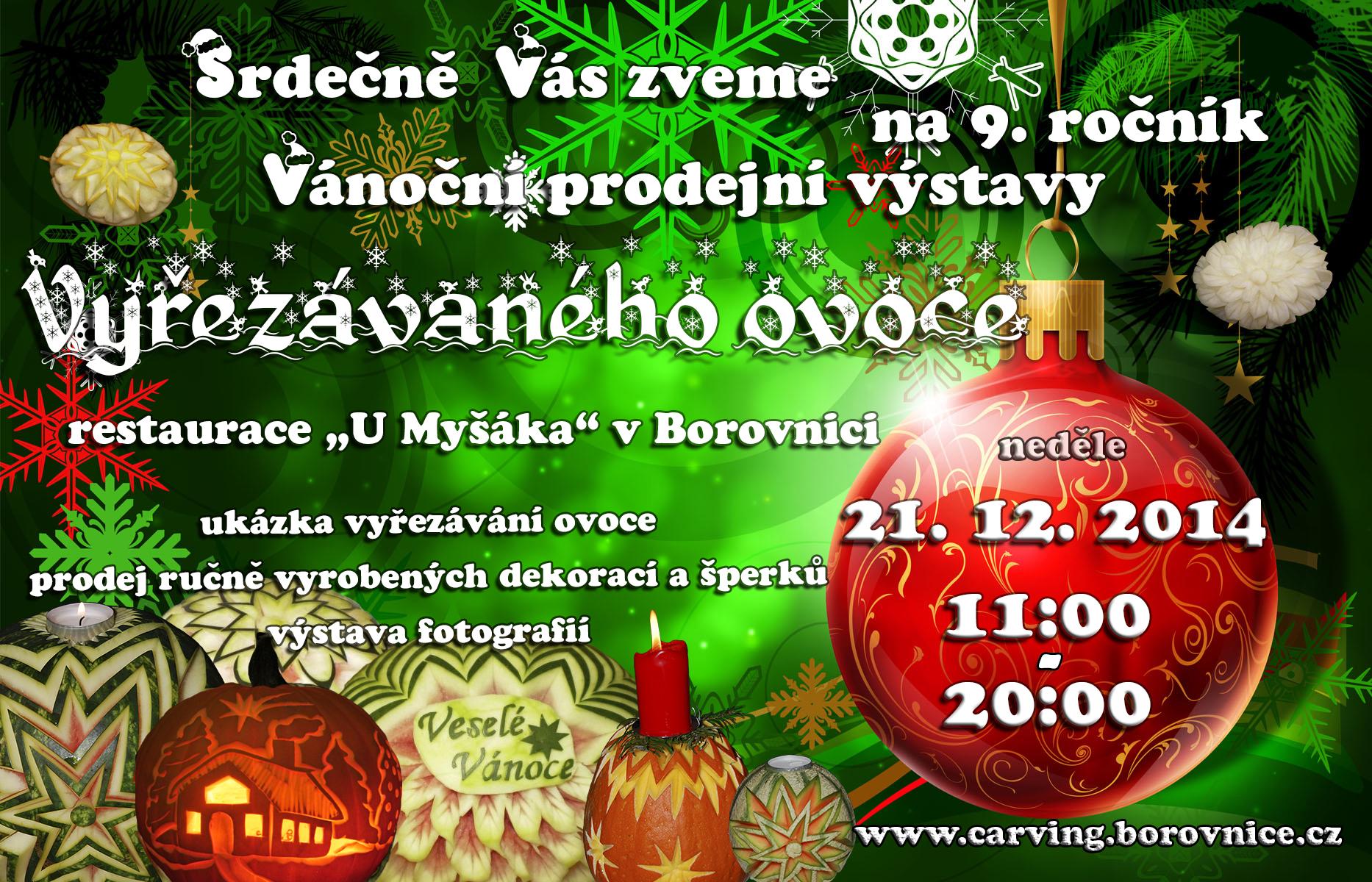Vánoční výstava Borovnice